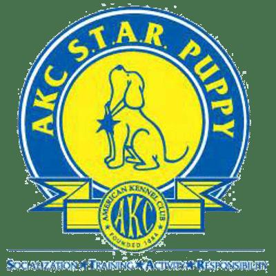 akc puppy
